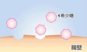 希少糖1.jpg